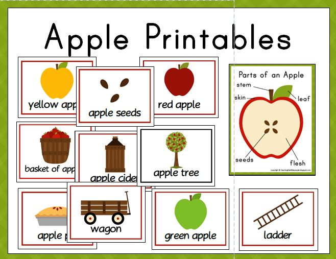 picture about Parts of an Apple Printable called Substance Catalogue::Coaching The Minor Us citizens